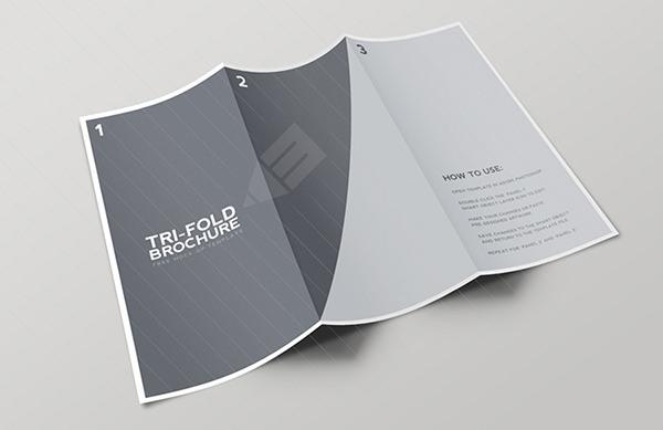 16+ Blank Tri-Folder Brochures - PSD, Vector EPS, JPG Download