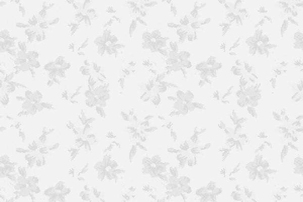 25+ Free Seamless Grey Patterns FreeCreatives