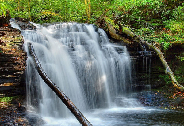 3d Waterfall Live Wallpaper 21 Waterfall Wallpapers Backgrounds Images Freecreatives