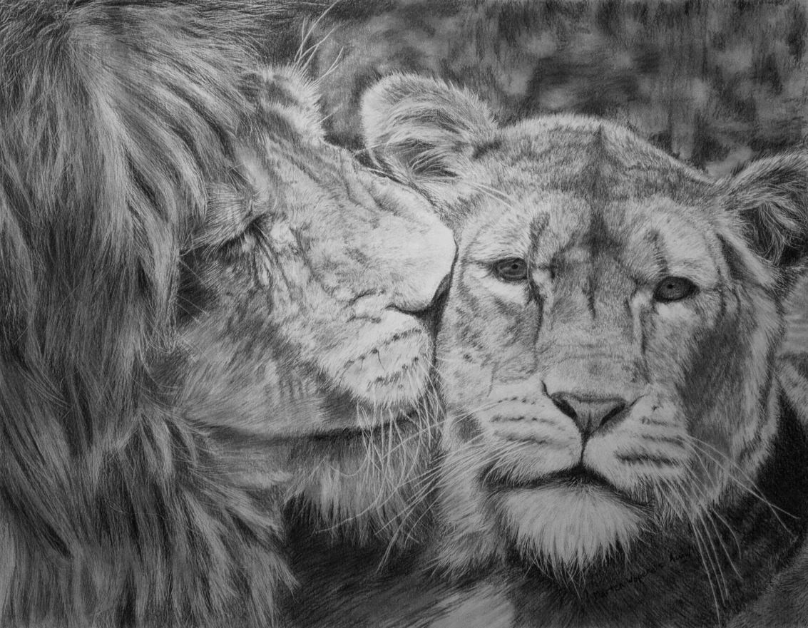 Mother Quotes Wallpapers Hd 17 Lion Drawings Pencil Drawings Sketches Freecreatives