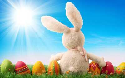 30+ Easter Bunny Wallpapers, Backgrounds, Images   FreeCreatives