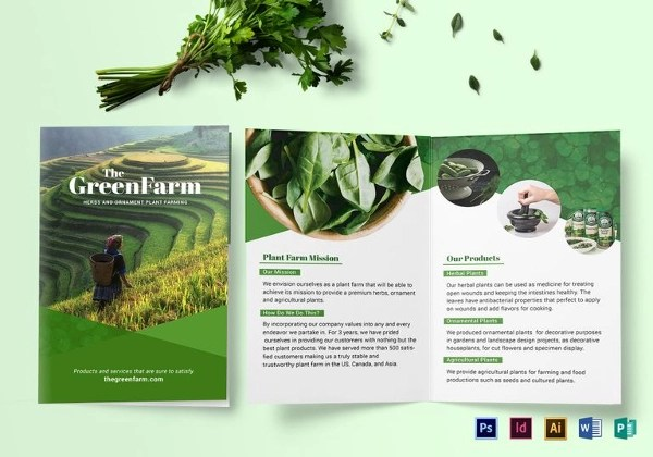 24+ Landscape Brochure - PSD, INDD, EPS, AI Download - Company Brochure Templates