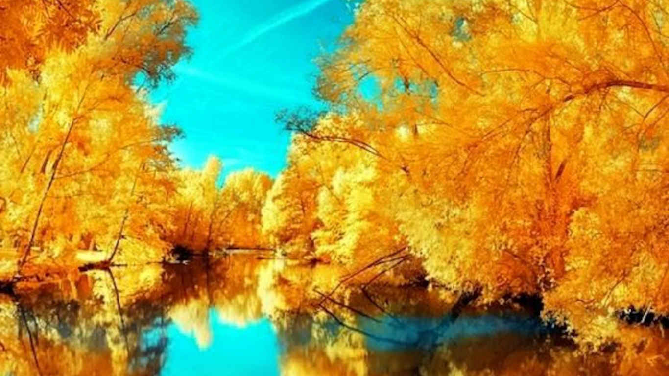 Free Wallpaper Fall Colours 21 Autumn Backgrounds Fall Wallpapers Pictures Images