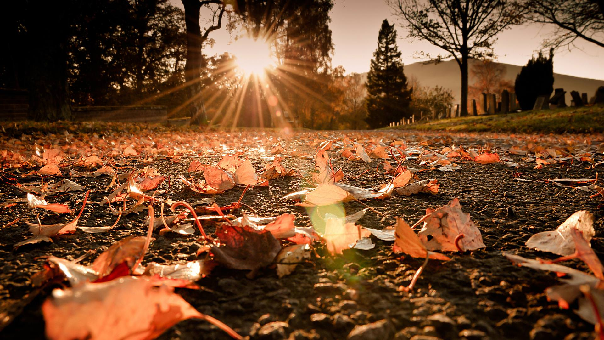 November Fall Wallpaper 22 Sunshine Wallpapers Sunrise Backgrounds Images