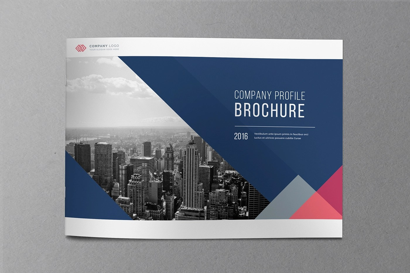 Free Company Profile Template Blugraphic 20 Financial Brochures Psd Vector Eps Jpg Download