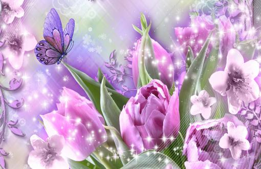Rose Flower Border Happy Mothers Day Quotes Wallpaper Tulips Full Hd Wallpapers Search Page 6