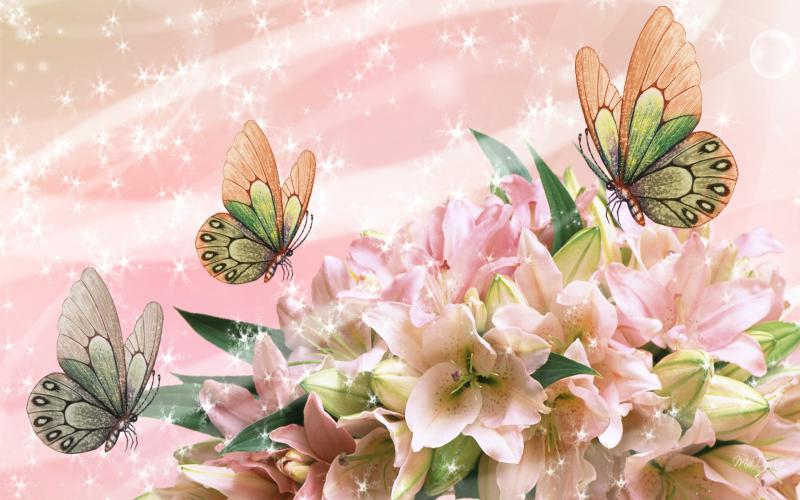 Cute Baby Pictures Wallpapers Desktop Hd Gorgeous Gladiola Wallpaper Download Free 83255