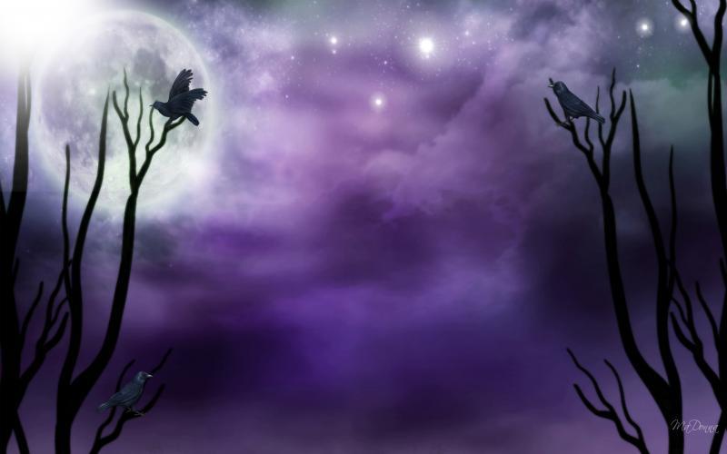 New Cute Girl Wallpaper Download Hd Purple Moonlight Wallpaper Download Free 104555