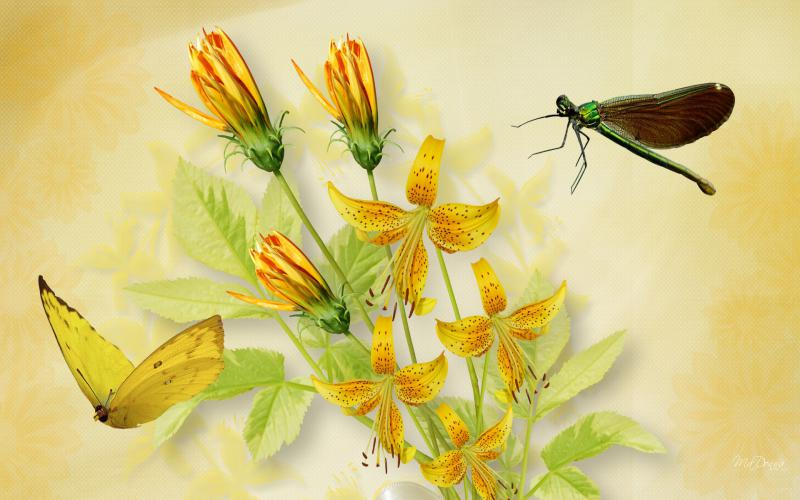 Search Cute Good Night Wallpapers Hd Tiger Lilies Dragonfly Butterfly Wallpaper Download