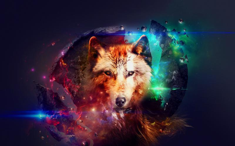 Cute Small Baby Wallpapers Hd Hd Abstract Wolf Art Wallpaper Download Free 143718
