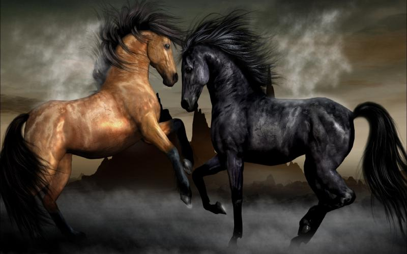 Hd Wallpapers 3d Red Black Background Hd Good Horse Vs Evil Horse Wallpaper Download Free 119929