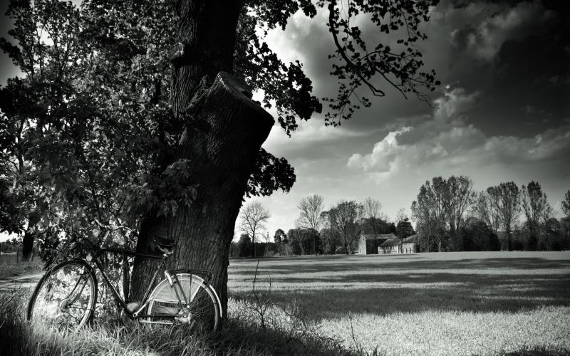 Happy Easter Wallpaper 3d Hd Bicycle In The Country In Black White Wallpaper