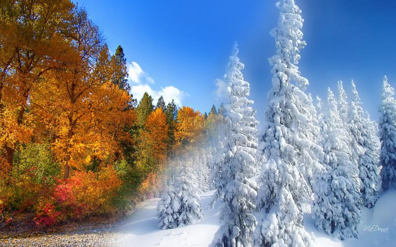 Cute Fall Computer Wallpapers Hd Fall To Winter Wallpaper Download Free 60428
