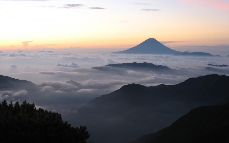 Cute Baby Tiger Wallpaper Hd Mt Fuji Above The Clouds Wallpaper Download Free 52657