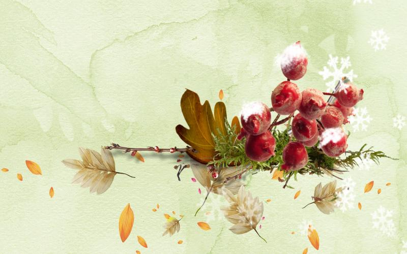 Microsoft Fall Wallpaper Hd Simple Fall Wallpaper Download Free 56088