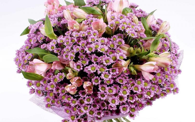 3d Hd Good Night Wallpaper Hd Bunch Of Small Purple Flowers Wallpaper