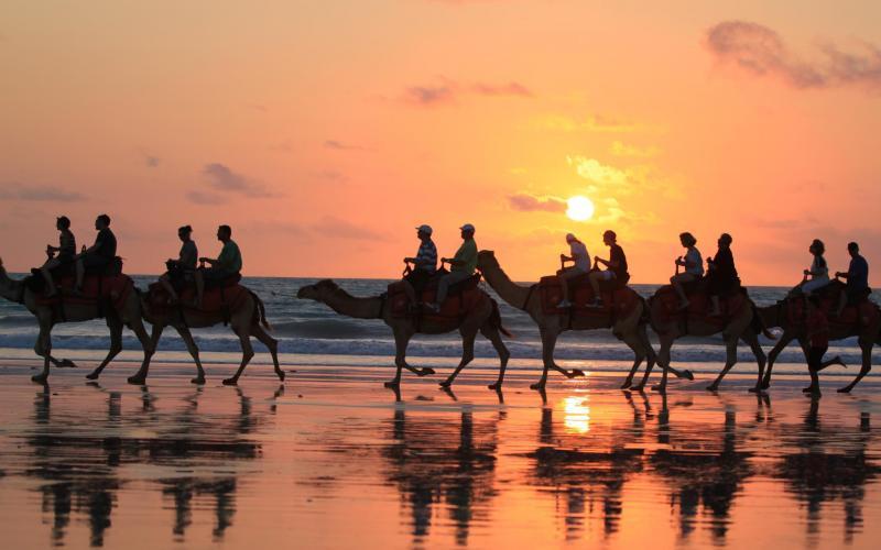 Good Morning Cute Baby Hd Wallpaper Hd Sunset Camel Rides Broome Western Australia Wallpaper
