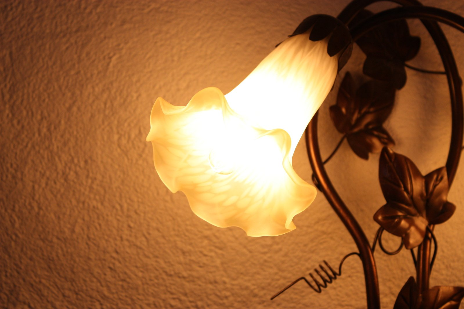 Free Blume Lampe Stock Photo Freeimages Com