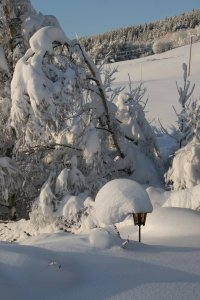 Free Winter Lamp 3 Stock Photo