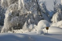 Free Winter Lamp 1 Stock Photo