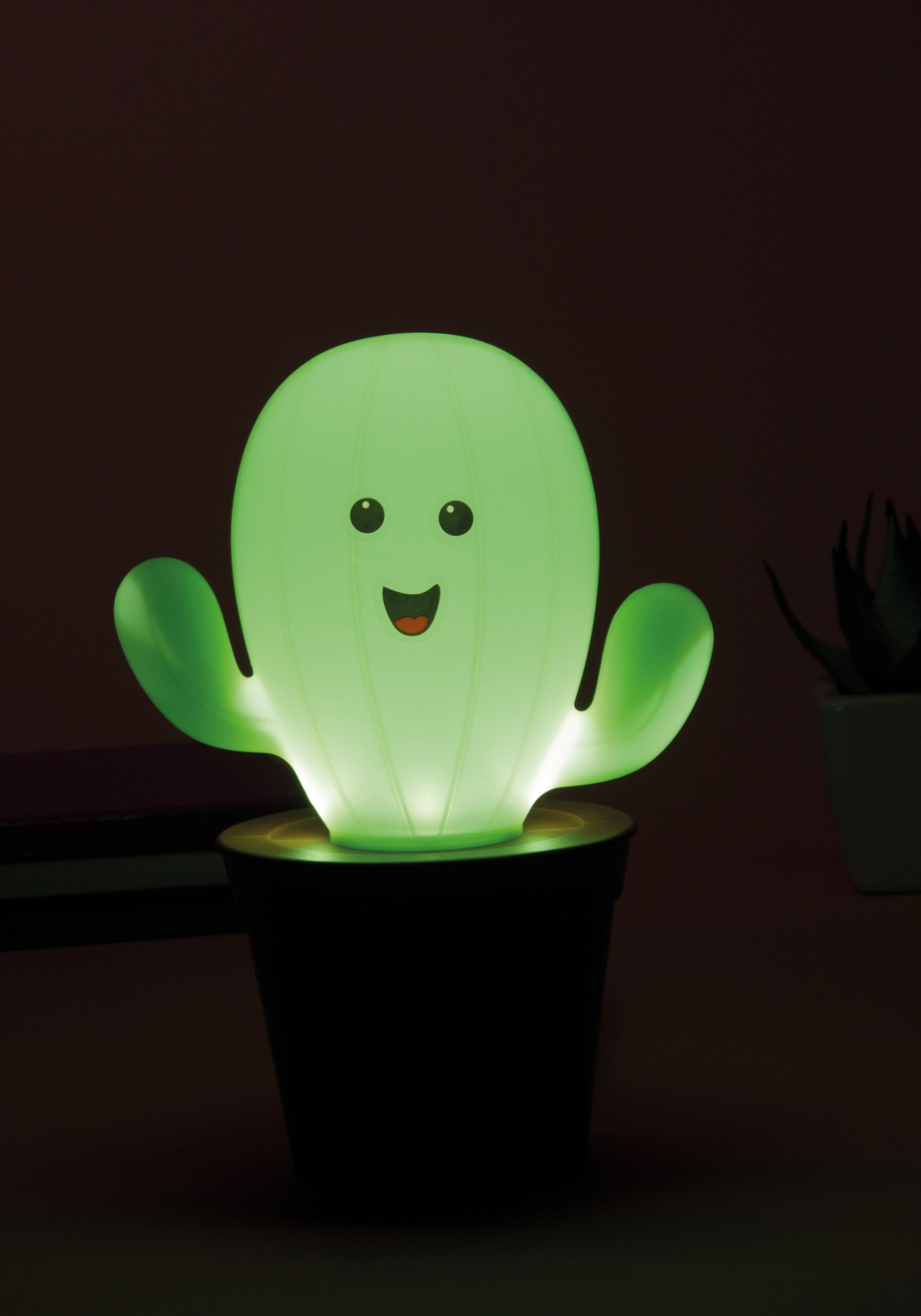 Cactus Verlichting Cactus Lamp Home Lighting Decor