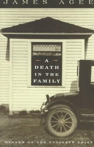Read Books A Death in the Family Online