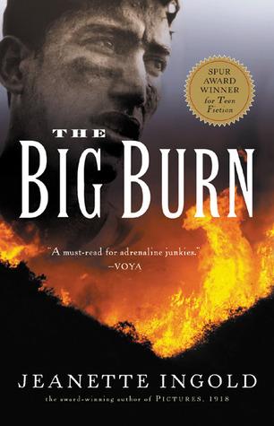 Read Books The Big Burn Online