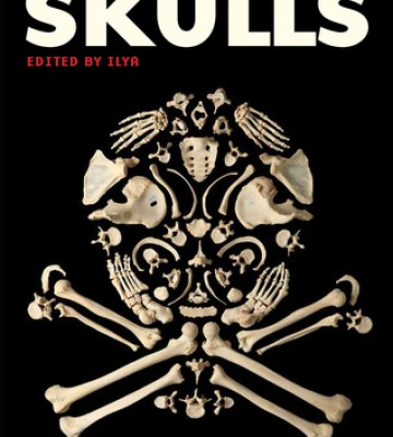 The Mammoth Book Of Skulls Exploring Icon From Fashion To Street Art