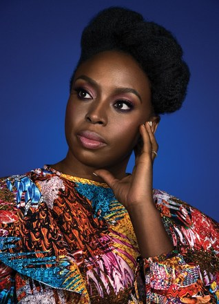 Read Books Chimamanda Ngozi Adichie Comes to Terms with Global Fame Online