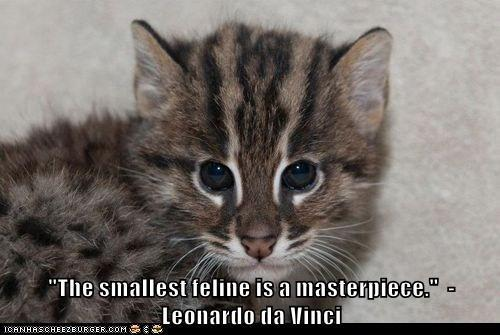 Cats Quotes 873 Quotes