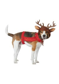 Reindeer Costume for a Dog