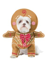 Christmas Dog Costume - Christmas Decore