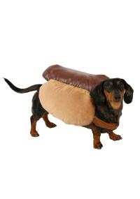Hot Dog Costume for Dogs