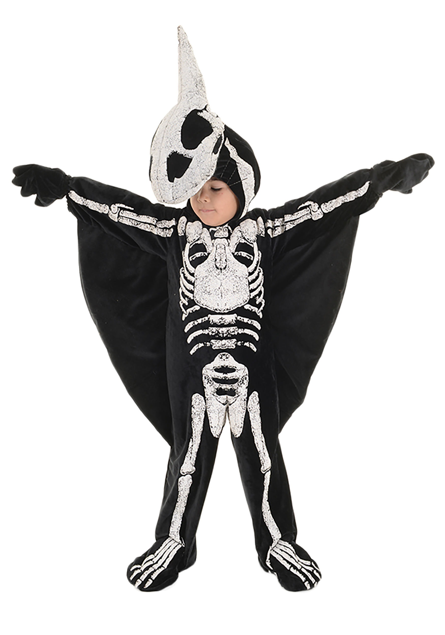 Toddler/Child Pterodactyl Fossil Costume for Boys