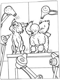 Dog salon coloring pages - Hellokids.com