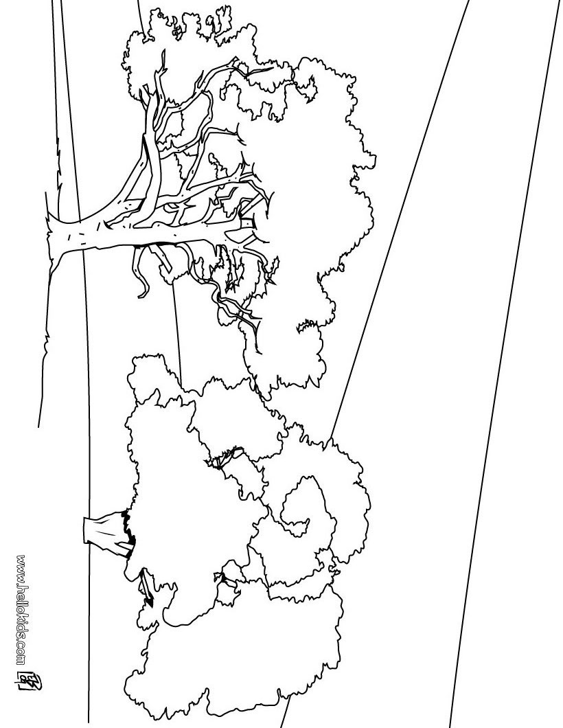 Free coloring pages nature scenes -  Nature Coloring Pages Tree Coloring Download