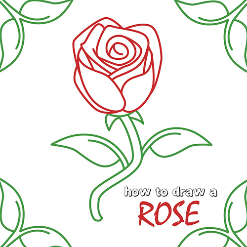 How to draw how to draw a rose step by step - Hellokids