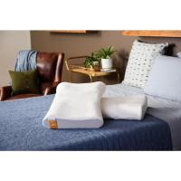Tempur-Pedic Contour Standard Side to Back Bed Pillow ...