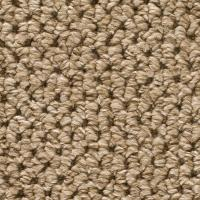 TrafficMASTER Corkwood - Color Tidewater Loop 12 ft ...