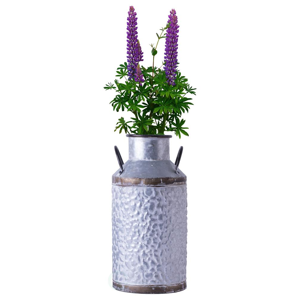 Decorative Milk Urn Vintiquewise Large Rustic Farmhouse Style Galvanized Metal Milk Can Decoration Planter And Vase
