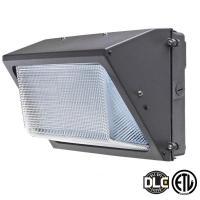 Axis LED Lighting 60-Watt Bronze 5000K LED Outdoor Wall ...
