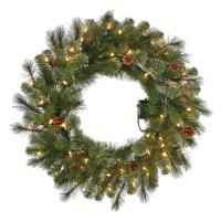30 in. Pre-Lit B/O LED Alexander Pine Artificial Christmas ...