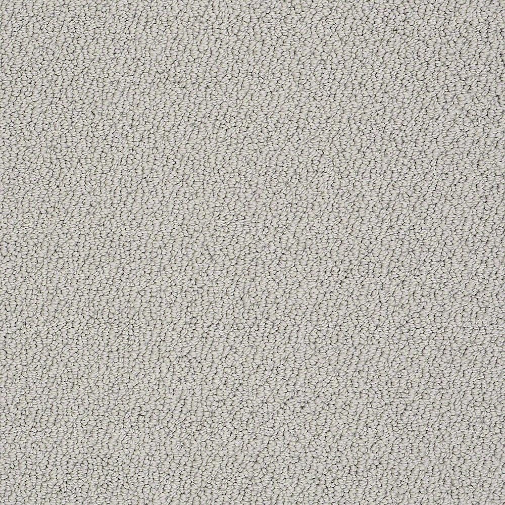 Platinum Plus Carpet Sample Treasure In Color Arctic