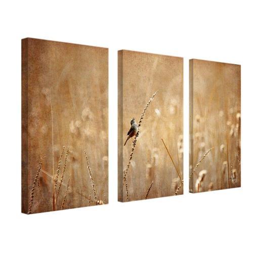 Medium Crop Of 3 Piece Canvas Art