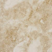 MS International Cappuccino 12 in. x 12 in. Polished ...