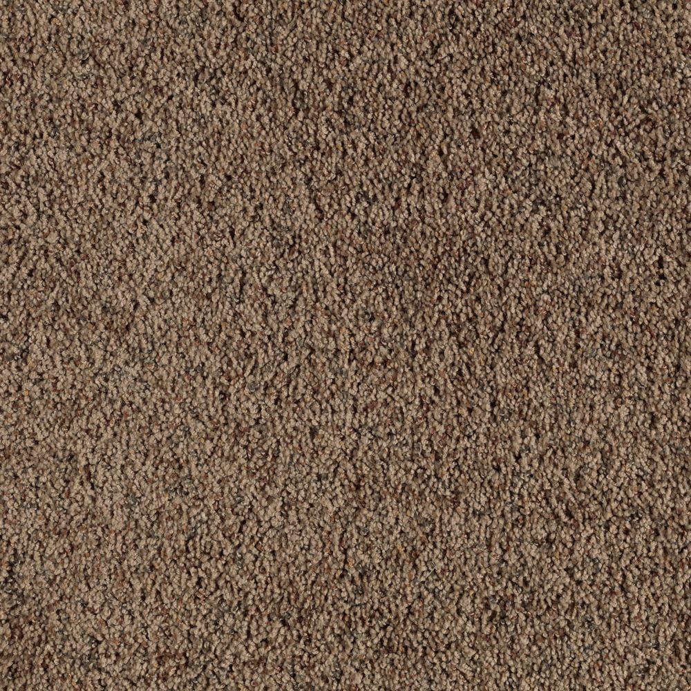Shakedown Color Thatched Roof Twist 12 Ft Carpet 0354d