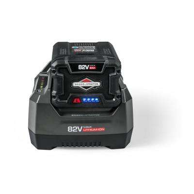 Briggs  Stratton - Replacement Engines  Parts - Outdoor Power