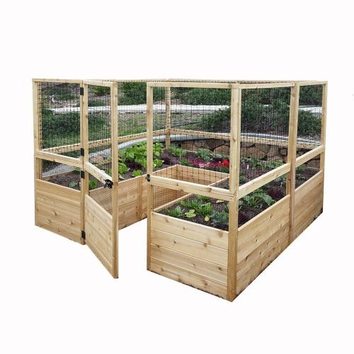 Medium Of In Home Garden Kit