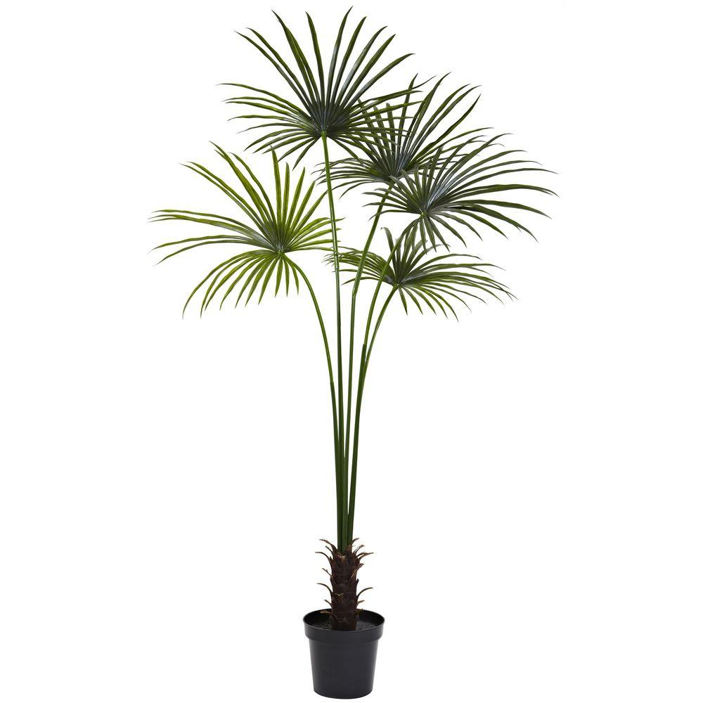 Home Depot Palm Trees 7 Ft Uv Resistant Indoor Outdoor Fan Palm Tree