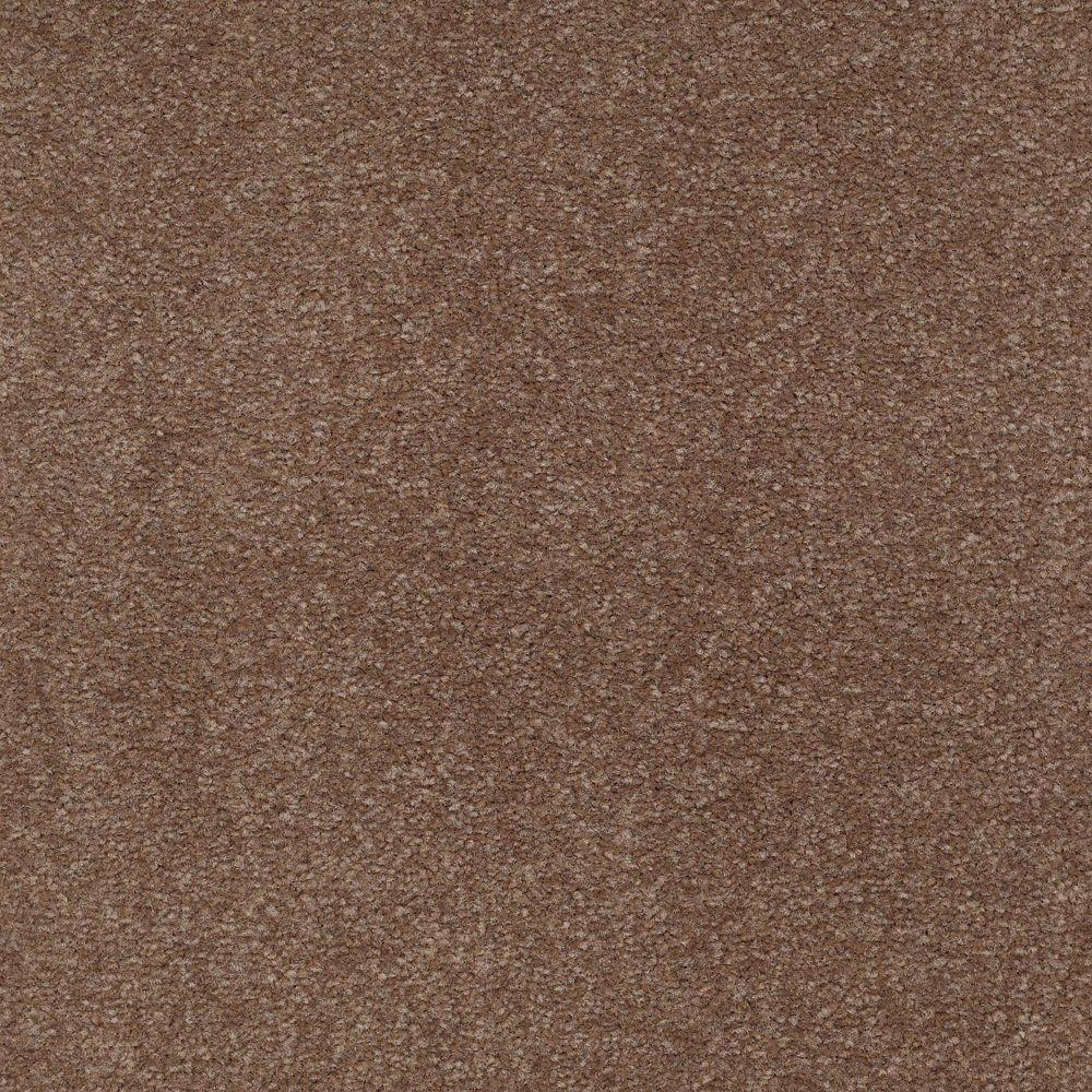Platinum Plus Carpet Sample Enraptured I Color Spiced